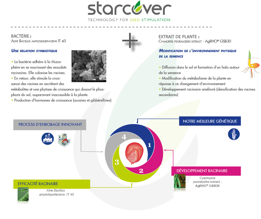 zoom starcover