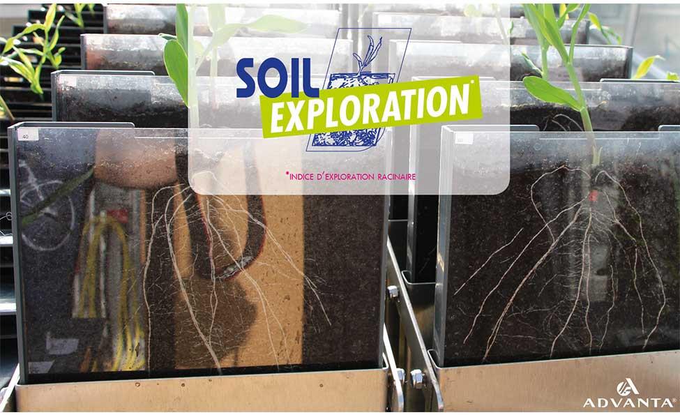 SOIL EXPLORATION