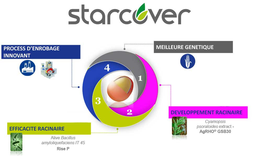 Protection de semences STARCOVER