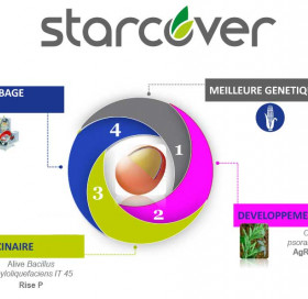 Protection de semences STARCOVER