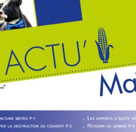 ACTU MAÏS IMPLANTATION