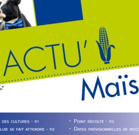 ACTU MAÏS FOURRAGE