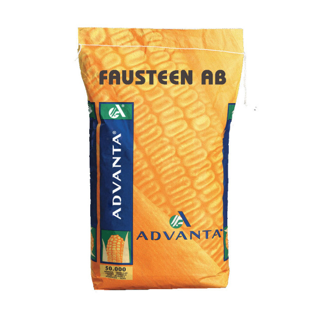 FAUSTEEN AB