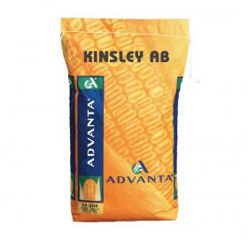 KINSLEY AB