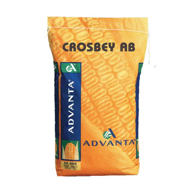 CROSBEY AB
