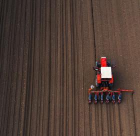 Comment réussir son semis maïs ?