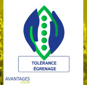 Tolérance égrenage